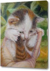 Картина Котёнок на ладони.
