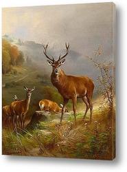 Картина Олень 1888