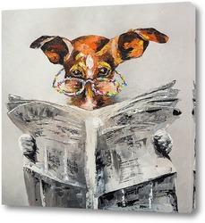 Картина Собачьи новости