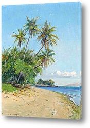 Картина Гавайский пляж с пальмами, 1932