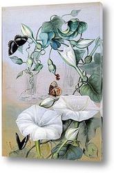 Картина Исследование лилий и бабочек около озера
