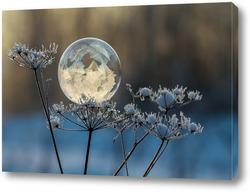 Картина Мыльный пузырь на растении
