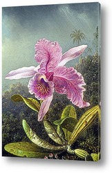 Орхидея (часть картины)