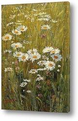 Картина Цветы на лугу
