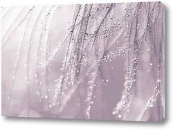Картина Перья с каплями воды. Макро перьев.