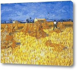 Сбор урожая в Провансе, 1888