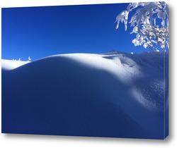 Снежна природа 5 / Snowy nature 5