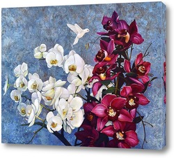 Колибри и орхидеи