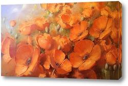 Оранжеые маки
