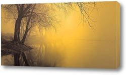 туман 7