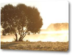 Картина летнее утро
