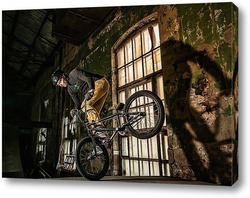 Картина BMX Райдер