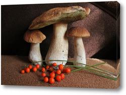 Картина белые грибы