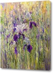 Картина Ирисы в саду