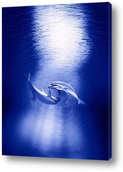 Картина Dolphin071