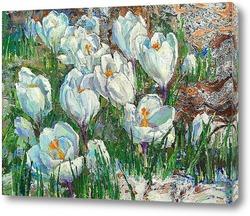Картина Весна. Крокусы.