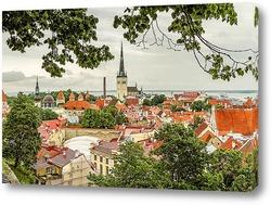 Картина Таллин Старый Город Панорама