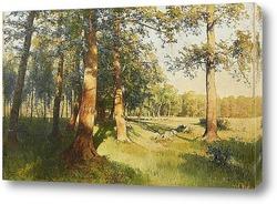 Луг залитый солнцем, 1913