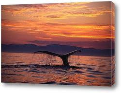 Картина Whale029