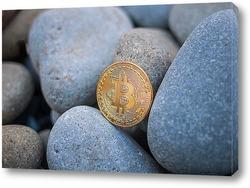 Картина Биткоин среди камней
