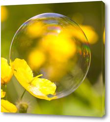 Картина Мыльный пузырь на цветке