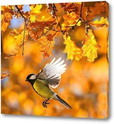 синица осенью