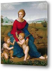 Картина Мадонна Бельведера