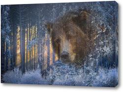 Картина Взгляд медведя