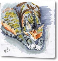Пучок кошачьих лап