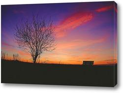 Дерево и лавка на закате