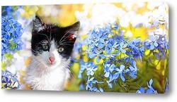 Картина котенок и незабудки