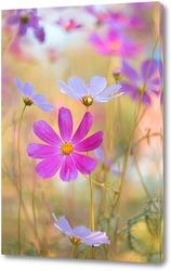 Картина разноцветное лето