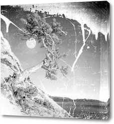 Картина Монохромный пейзаж