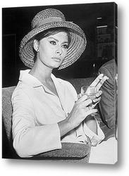 Картина Sophia Loren-13