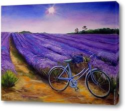 Картина Велосипед и лаванда