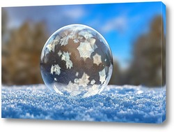 Замёрзший мыльный пузырь в зимнем лесу