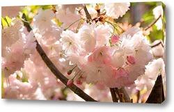 Картина Белоснежная весна