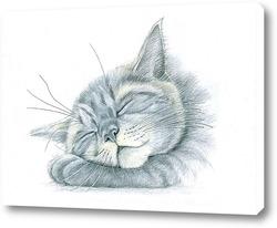 Картина Спящий котишка