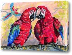 Красные ара