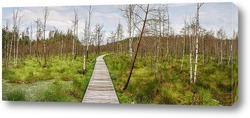 Картина Путь проходит через болото