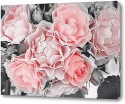 Картина Нежные розы