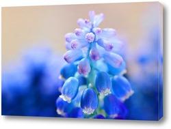 Картина Голубое