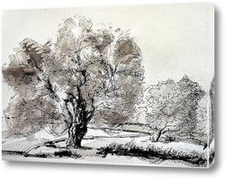 Картина Оливковое дерево