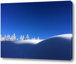 Снежна природа 6 / Snowy nature 6