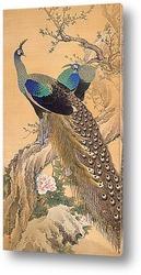Картина Пара павлинов весной