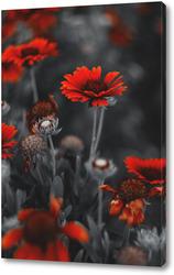 Картина Хризантемы
