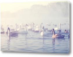 Картина Лебединое озеро