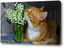 Картина рыжий кот и ландыши