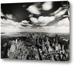 Картина NY081-1