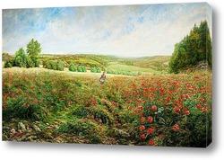 Картина Угол Поля в Расцвете